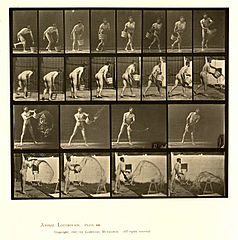Animal locomotion. Plate 400 (Boston Public Library).jpg