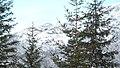 Apriltzi, Bulgaria - panoramio (305).jpg