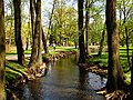 Arkadijas parks - panoramio (4).jpg