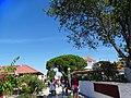 Armona Island (Portugal) (49224731721).jpg