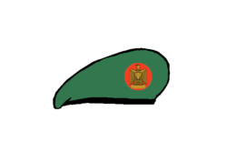 Armored corps brigadier Beret - Egyptian Army.png