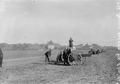 Artillerie bei der Gefechtsausbildung - CH-BAR - 3237406.tif