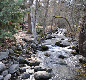 Ashland Creek (Ashland, Oregon).jpg