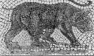 Atlas bear subspecies of mammal