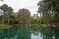 Auburn NSW 2144, Australia - panoramio (70).jpg