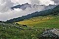 Auf dem Plateau de Bouy 1987 (PIVF2125).jpg