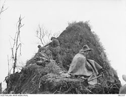 Australian 2-16th Infantry Battalion near the Pimple December 1943 (AWM photo 062337).jpg