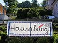 Austriazismus Hausübung.JPG