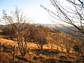 Autumn on the Vosges mountains.jpg