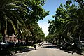 Avenida Diagonal - panoramio.jpg