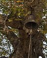 Avlonari church Agios Demetrios Bell in the tree Euboea Greece.jpg