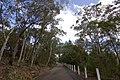 Avon NSW 2574, Australia - panoramio (8).jpg