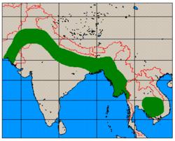 Axis porcinus range map.png