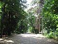 Ayazmotopark - Stara Zagora (4759135209).jpg