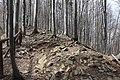 BPN szlak na Wielka Rawke 3.jpg