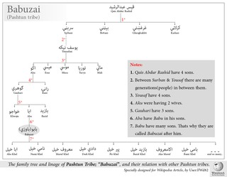 Babuzai (Pashtun tribe)