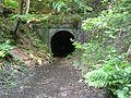 Badgers Oak Tunnel.jpg