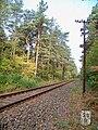 Bahnstrecke Eilenburg–Wittenberg3.jpg