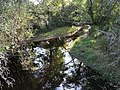 Bandiat Abjat-sur-Bandiat pont la Roderie (2).jpg