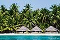 Bangaram Island, Lakshadweep 20160325- DSC1780.jpg