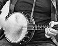 Banjo Blur (23043792999).jpg