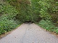 Barrier in the Hambach forest 02.jpg