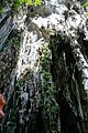 Batu Caves. Temple Cave. Upper part. 2019-12-01 11-07-32.jpg