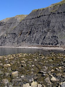 Beach and cliffs, Egmont Bight - geograph.org.uk - 900296.jpg
