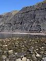 Beach and cliffs, Egmont Bight - geograph.org.uk - 900296.jpg