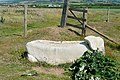 Beached whale - geograph.org.uk - 1378308.jpg