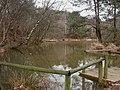 Beacon Hill, fishing lake - geograph.org.uk - 1728259.jpg