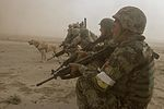 Beast Company, 1-12 Inf., and ANA air assault into Mirugal Kalay 141023-A-OY066-049.jpg