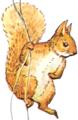 Beatrix-potter-inside-cover-squirrel-nutkin.png