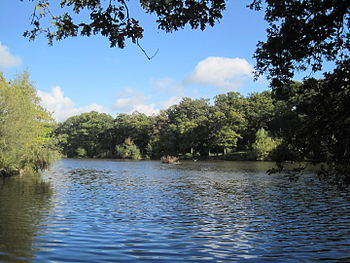 Beech Hill Lake in Monken Hadley Common