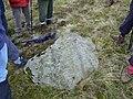 Benchmark Stone - geograph.org.uk - 1008022.jpg