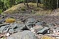 Bergslagssafari Uppland 2012 05 Brunna gruvor 3.jpg