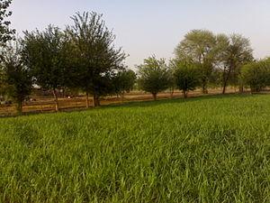 Bhawana - Image: Bhawana City 1