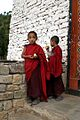 Bhutan - Flickr - babasteve (64).jpg