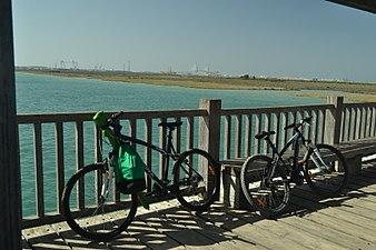 Bicicletas en el puente del Río San Pedro.jpg