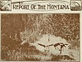 Biennial report, Montana Game and Fish Commission, State of Montana (1917) (14782432152).jpg