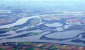 Nieuwe Merwede - Image: Biesbosch 20050928 40011