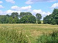 Bieselheide - Naturliche Grenze (Natural Boundary) - geo.hlipp.de - 39607.jpg