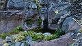 Biosphere Reserve La Gomera 22.jpg