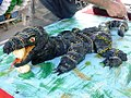 Birthday cake in shape of Lace monitor with egg in mouth.jpg