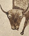 Bison Head art detail, from- Shield - Google Art Project (cropped).jpg