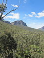 Blue Mountains 3.jpg