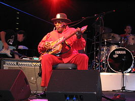 Bo Diddley in 2004 in Wolfsburg