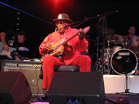Bo Diddley Wolfsburg 2004 04.jpg