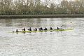 Boat Race 2014 - Main Race (59).jpg