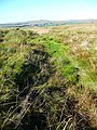 Boggy drain southeast of Muirkirk - geograph.org.uk - 993670.jpg